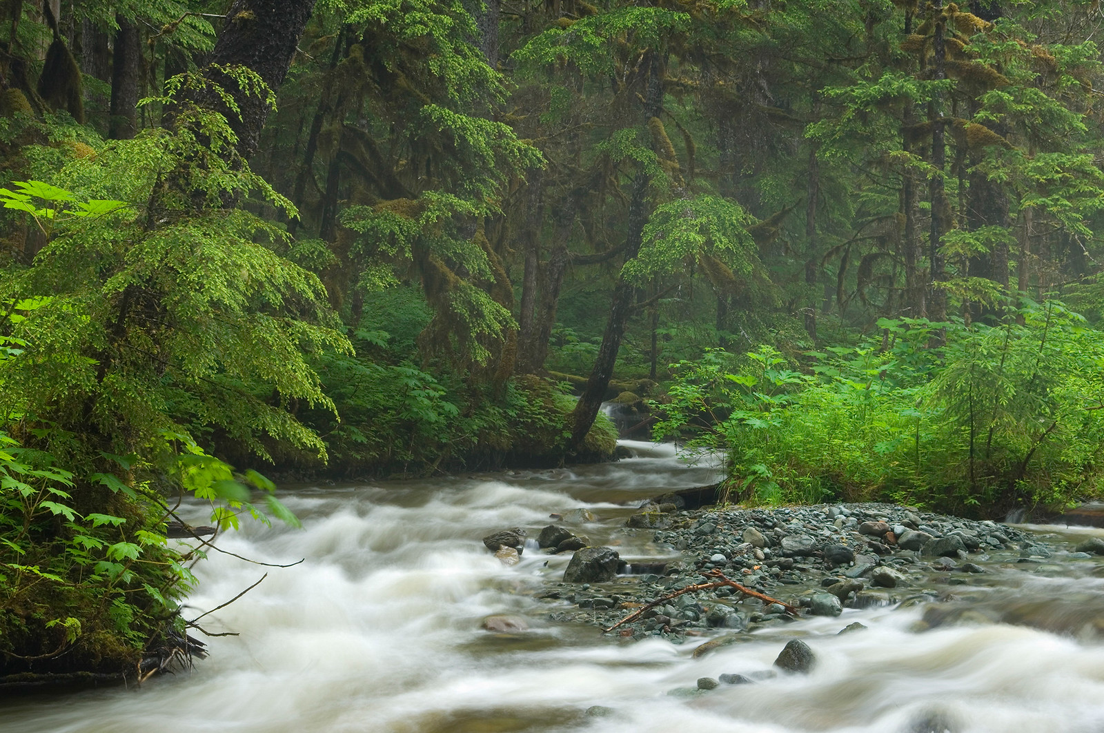 Tongass National Forest, AK