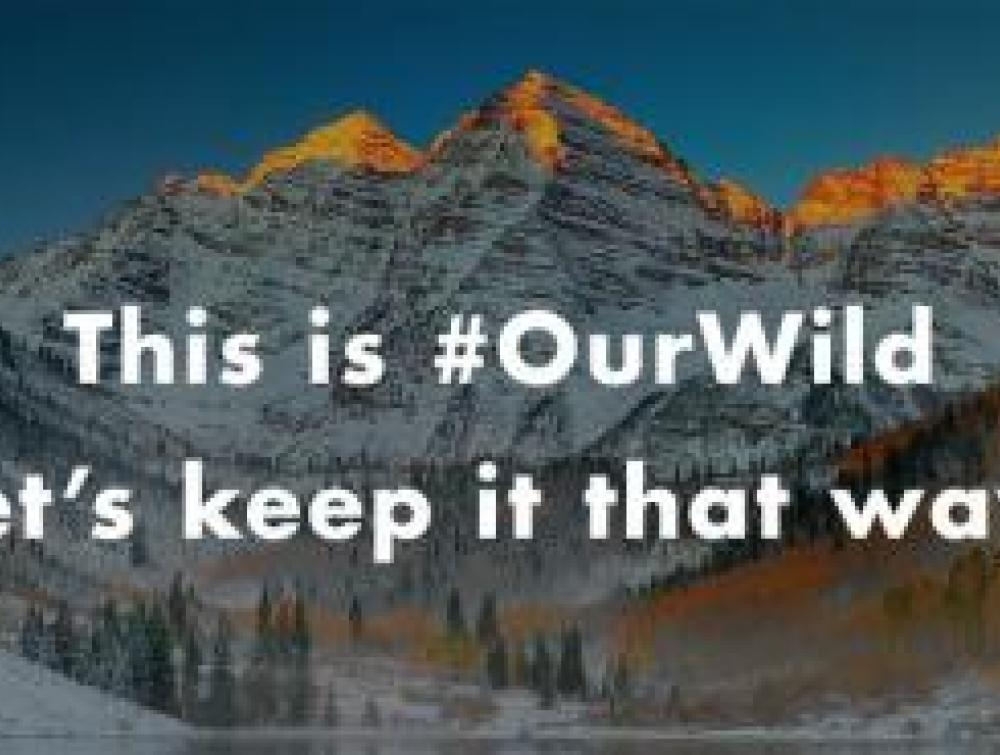 """This is #OurWild. Let's Keep it that way"