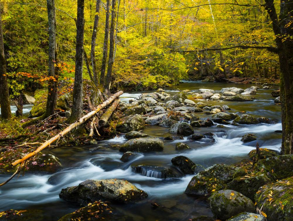 Things to Do: Southern Appalachians | The Wilderness Society
