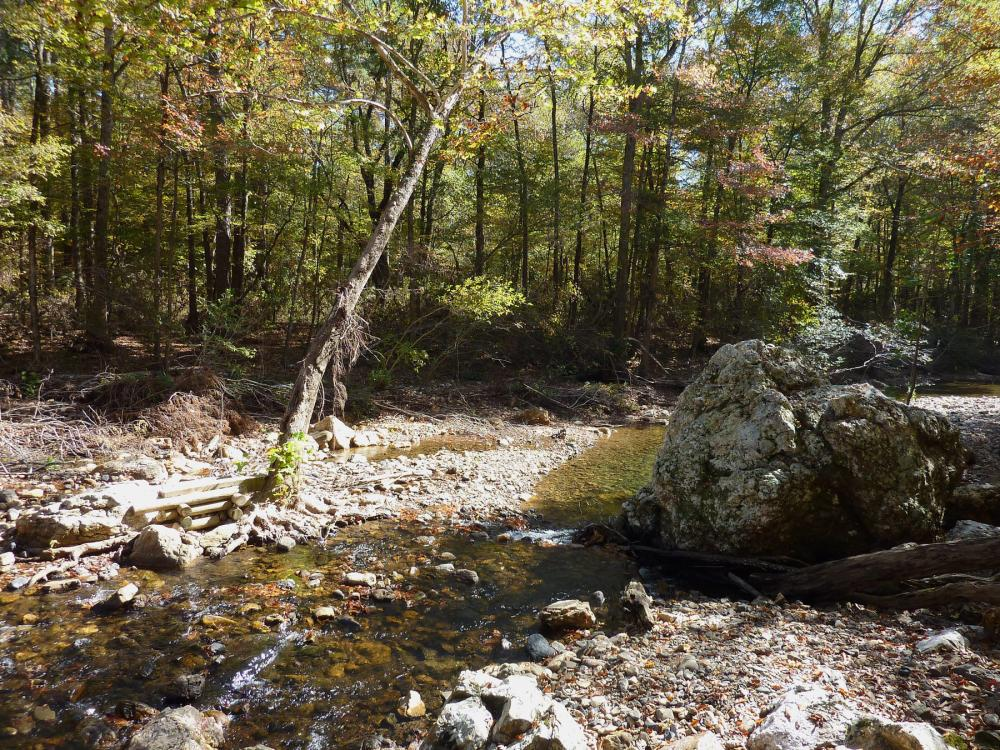 Shallow, rocky creek in the foreground and early-autumn trees in the background in Albert Pike Recreation Area within Ouachita National Forest, Arkansas