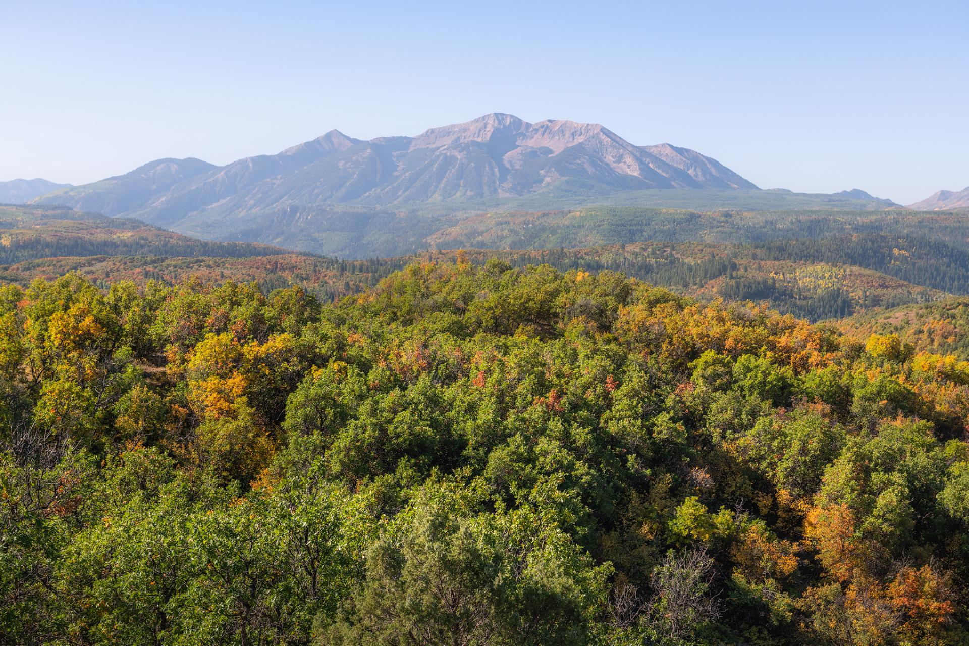 Mountains and fall foliage in North Fork Valley, Colorado.
