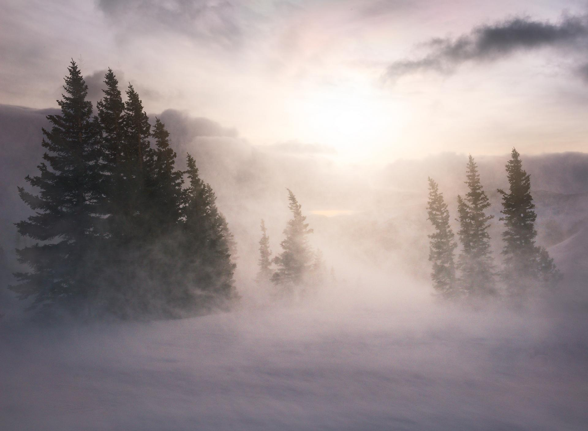 Blowing snow in White River National Forest, Colorado.