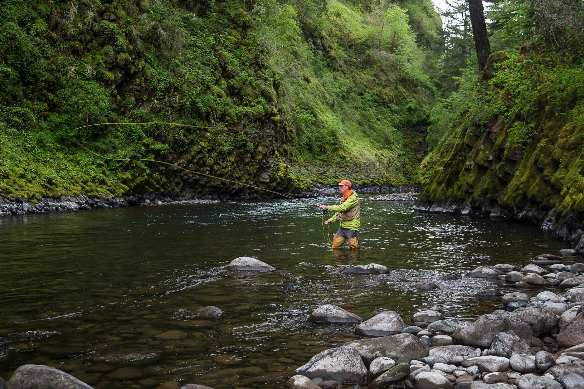 Man fishing surrounded by greenery in Molalla River Wild and Scenic River, Oregon